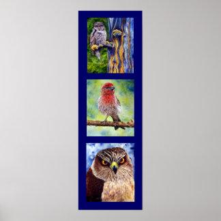 Poster de los pájaros del arte