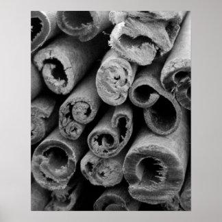 Poster de los palillos de canela