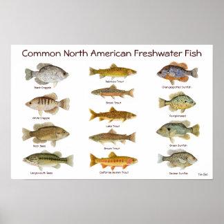 Poster de los pescados de agua dulce