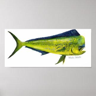 Poster de los pescados de Mahi-Mahi