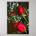 Poster de los rosas rojos