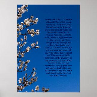 Poster de los salmos 23