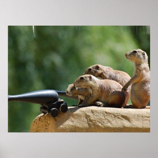 Poster de los soldados de perro de las praderas