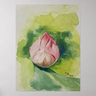 Poster de Lotus de la acuarela