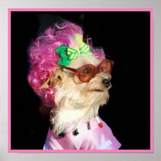 Poster de moda del perro de la mezcla del juguete
