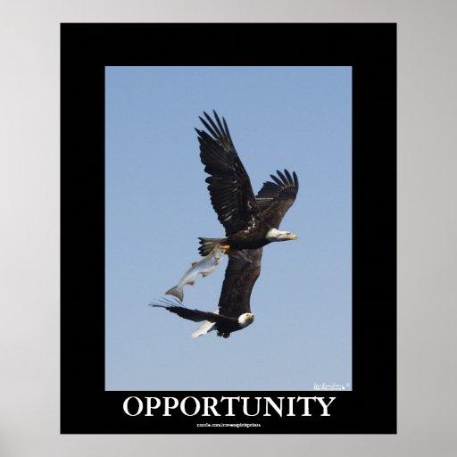 Poster de motivación calvo de la foto de Eagles de Póster