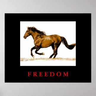 Poster de motivación de la libertad del caballo