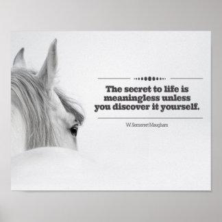 """Poster de motivación """"el secreto a la vida… """""""