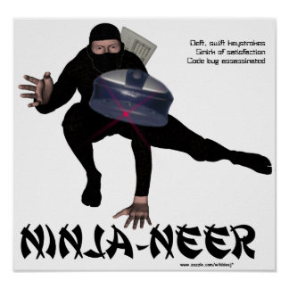Poster de Ninja-neer