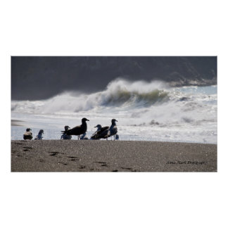Poster de observación de la onda