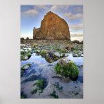 Poster de Oregon de la marea baja de la roca del H