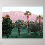 Poster de Palm Desert