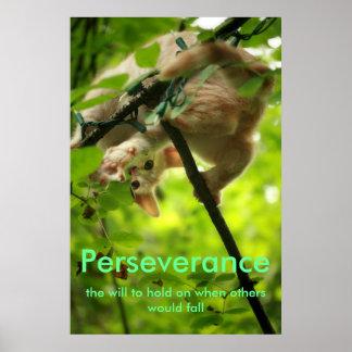 Poster de Perserverance