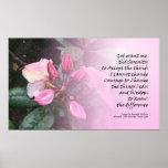 Poster de Rhodies del rosa del rezo de la serenida