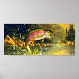Poster de salto de la trucha del río del arco iris póster