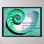 Poster de Shell del nautilus A01 con cita inspirad