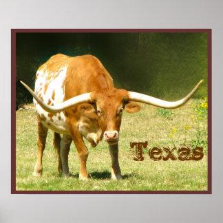 Poster de Tejas del ganado del fonolocalizador de