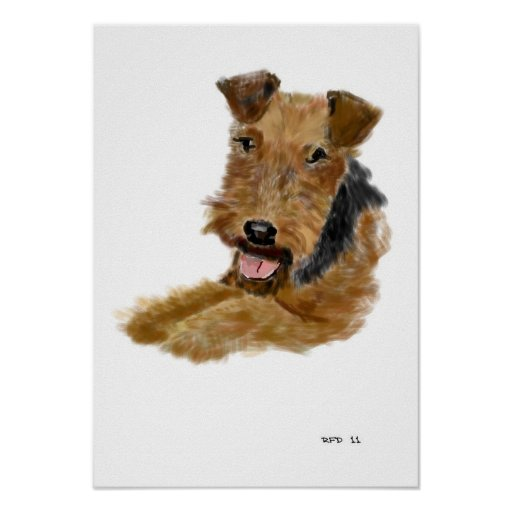 Poster de Terrier galés