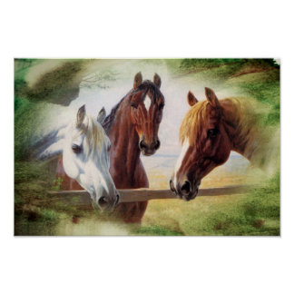 Poster de tres caballos