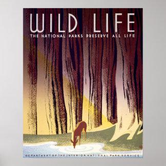 Poster de WPA de la fauna (ciervos)