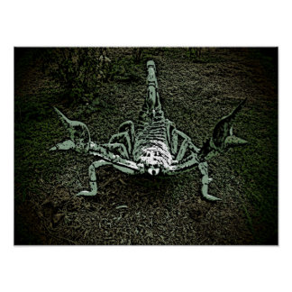 Poster decorativo del escorpión artístico