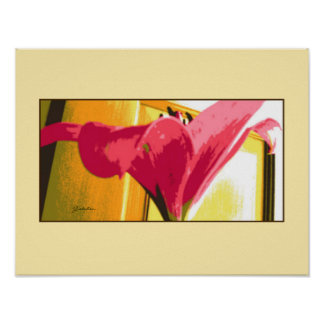 Poster - Deep Pink Lily