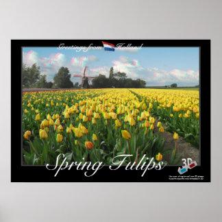 Poster del anáglifo del paisaje 3D de los tulipane