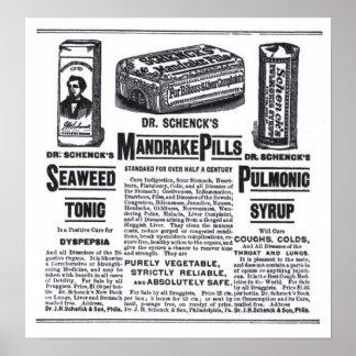 poster del anuncio de periódico de 1890 medicinas
