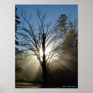 Poster del árbol de la epifanía