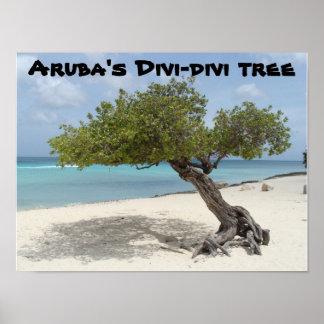 Poster del árbol del Divi-divi de Aruba