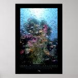 Poster del arrecife de coral