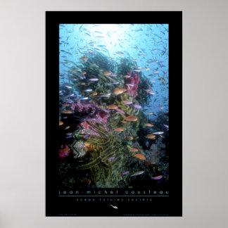 Poster del arrecife de coral póster