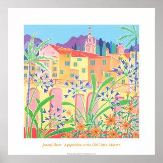 Poster del arte: Agapanthus en la ciudad vieja, Me