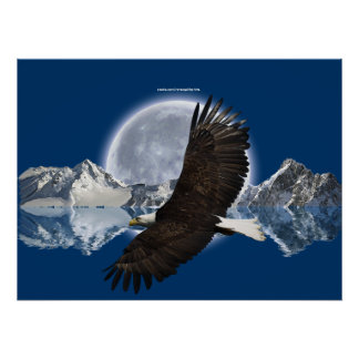 Poster del arte de Eagle calvo que vuela de la mo