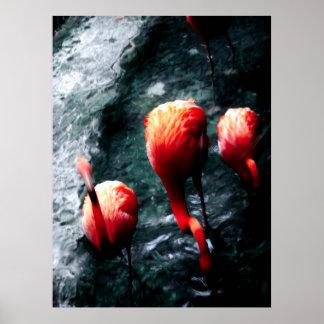 """Poster del arte de JTG de los """"flamencos rosados"""""""