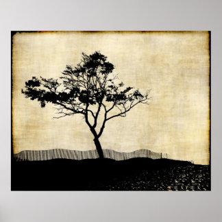 Poster del arte de la foto de la silueta del árbol