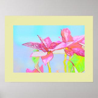 Poster del arte del Poinsettia