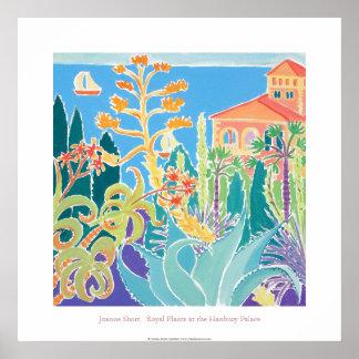 Poster del arte: Plantas reales en el palacio de H