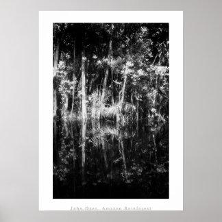 Poster del arte: Selva tropical del Amazonas. Negr