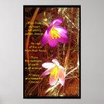 Poster del azafrán con Poem.1