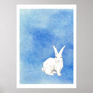 Poster del azul del conejo póster