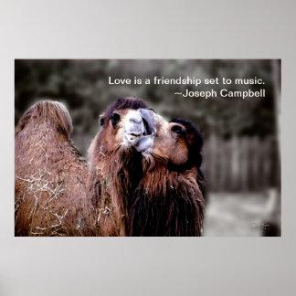 poster del beso del camello