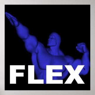 Poster del Bodybuilding de la flexión
