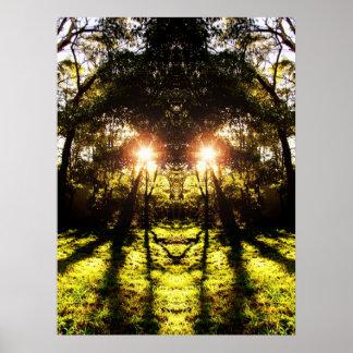 Poster del bosque de AURUS del DMT '