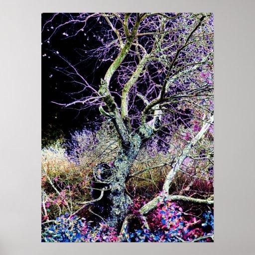 Poster del bosque de hadas 2