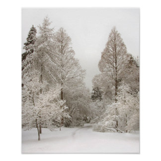 Poster del bosque del invierno de la impresión del