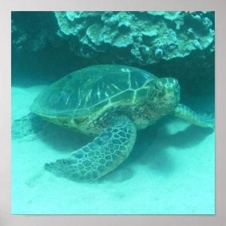 Poster del buceo con escafandra de la tortuga de m