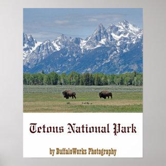 Poster del búfalo de Teton