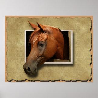 poster del caballo 3D