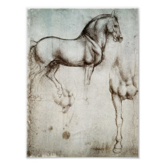 Poster del caballo de da Vinci